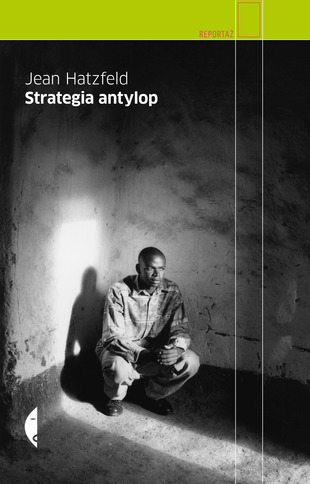 Strategia antylop
